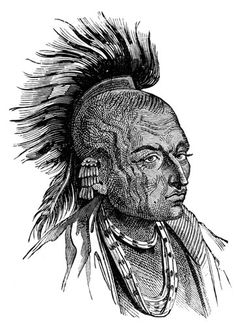Chippewa Indian - The Chippewa/Ojibway were one of the largest and most powerful tribes in North America. They inhabited the country west of the western Great Lakes, especially around Lake Superior. An Algonquian-speaking tribe; the Great Lakes Algonquians.