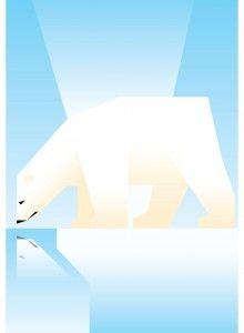 Polar Bear  Inspiration for the kids room, wall art.  www.zooillustrations.com