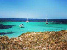 #rottnest#rottnestisland#island#wa#westernaustralia#thisisWA#blue#ocean#sky#indianocean#inlove#love#beachlife#bikelife#biking#bikingadventures on the island #water like #maldives#hot#day miss that #sunny#day so much #australia#thebest#place to #be#live#explore#enjoy  by mbinia http://ift.tt/1L5GqLp