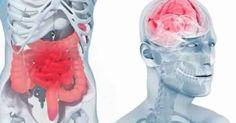 Ce n'est plus à prouver! Notre équilibre émotionnel est intimement lié au bon fonctionnement de notre corps et de chaque fonction. La digestion &...