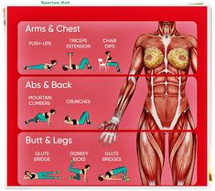 fitness gym, fun workouts #fitness #workout #tightening #bellyfat #fatloss #gymexercises