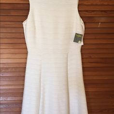 NWT Taylor Dress Cream colored fit & flare dress Taylor Dresses