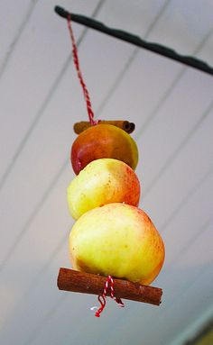 Winter bird feeder made of apples and cinnamon sticks.