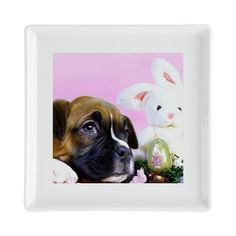 "Easter boxer puppy Square Cocktail Plate  5.75"" x 5.75"" Ceramic Dishwasher & microwave safe  #boxer #puppy #puppies #plates #easter #bunny #holiday #homedecor ""boxers #decorative"