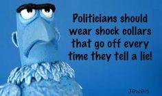 polititian :)