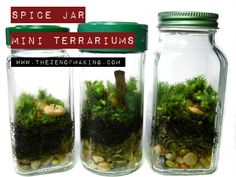 Tutorial: Spice Jar Mini Terrariums | Red-Handled Scissors
