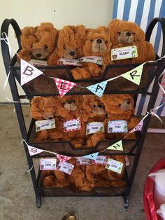 Teddy Bears Picnic Birthday Party Ideas   Photo 1 of 30   Catch My Party