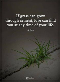 Quotes If grass can grow through cement, love can find you at any time of your life.