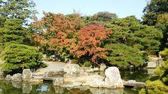 #桂離宮 #kyoto