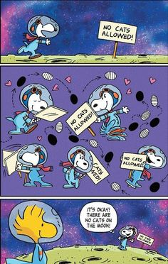 Charlie Brown Y Snoopy, Snoopy Love, Snoopy And Woodstock, Beagle, Peanut Pictures, Snoopy Cartoon, Stupid Guys, Snoopy Quotes, Peanuts Quotes