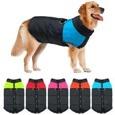 Winter Warm Dog Padded Zipper D-Ring Coat Pet Skiing Clothing for Large Dog