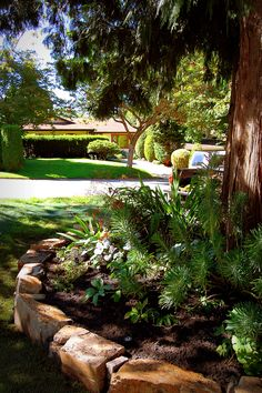 Stone retaining wall & lawn replacement