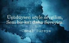 The 5 most beautiful poems in memory of Cemal Sürya - Femalez Sites Poems Beautiful, Most Beautiful, Poem Quotes, Cool Words, Karma, Quotations, Literature, Poetry, Feelings