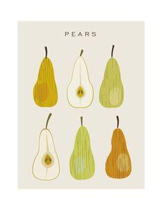 Pears poster - Original Illustrated Digital Image for Download