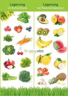 Storage of fruits and vegetables - Rezept - Speisen - Nutrition Fruit And Vegetable Storage, Healthy Snacks, Healthy Eating, Diet Recipes, Healthy Recipes, Piel Natural, Eat Smart, Food Facts, Diet Meal Plans