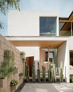 Photo 3 of 9 in This Crisp California Residence Is All About the Courtyard - Dwell Outdoor Spaces, Outdoor Living, Outdoor Decor, Sliding Pocket Doors, Hillside Garden, Casa Patio, Masonry Wall, Courtyard House, Privacy Walls
