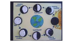MFA Science (Grammar Stage) ~ Lesson Oreo cookies to learn the moon phases. 1st Grade Science, Elementary Science, Science Classroom, Science Fair, Science Lessons, Teaching Science, Science Education, Science For Kids, Science Activities