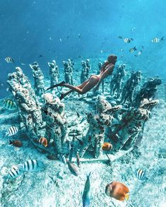 Underwater scluptures representing the circle of life, by Jason deCaires Taylor. The underwater sculpture in Gili Island will take divers… Fiji Travel, Travel Tips, Underwater Sculpture, Channeling My Inner, Gili Island, Gap Year, Circle Of Life, Places To Travel, Bali