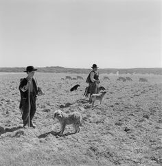 Shepherds, Artur Pastor, Portuguese photographer (1922-1999)