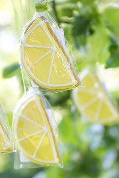 Zitronen im Baum