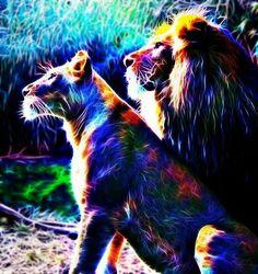Fractal lions