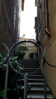 Roma, particolare.
