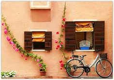 Birdcage, Veneto, Italy photo via theworldwelivein Bicycle Pictures, Paradise On Earth, Color Of Life, Bird Cage, Venice Italy, Windows And Doors, Beautiful World, Places To Go, At Least