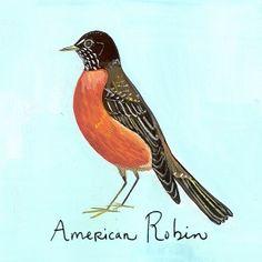 American Robin by Maira Kalman