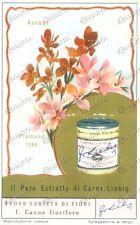 1955 FIGURINE LIEBIG Varietà fiori canne fiorifere ESTRATTO DI CARNE Danneggiata