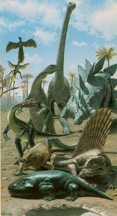This has about three actual dinosaurs on it but pretty cool you know icthyostegas and pelycosaurs and cynodonts cant help but not be full on dinosaurs but its not their fault dinosaurs weren't even invented yet. Achaeopteyix and Caudiopteryx got no excuses tho they are dinosaurs trying to be birds and thats a load of shit.