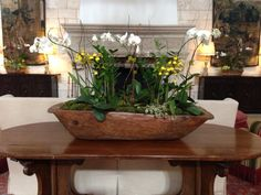 orchids in a antique doughbowl