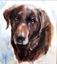 'Heidi' , portrait of a chocolate labrador dog created in watercolour, ink and soft pastels.  Ruth Brady, Pet Portrait Artist.