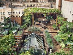 Lindo terraço ajardinado. Inspiração.