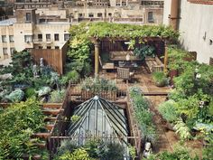 Roof Top Garden From France