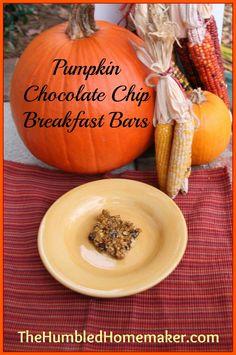 pumpkin chocolate chip breakfast bars