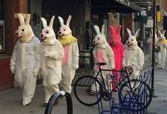 Crazy and Funny People Pics) Funny Photos, Funny Images, Silly Rabbit, Ash Wednesday, Tuesday, Bunny Suit, Funny People, Crazy People, Easter Bunny