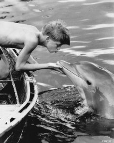 """Flipper (TV show) """"They call him Flipper, Flipper, Flipper, faster than lightening, no one you see is smarter than he. 1960s Tv Shows, Old Tv Shows, Movies And Tv Shows, Classic Tv, Back In The Day, Under The Sea, Dolphins, Childhood Memories, Growing Up"""