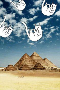 Ripndip iphone wallpaper #ripndip #middle #finger #cat #wallpaper #iphone #pyramid #sky