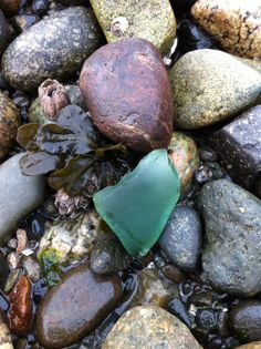 #Sea glass hunting at Harper Dock pinned with Pinvolve