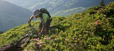 Biken Salzburg, Bike Hotel, Mountains, Nature, Travel, Vacation, Naturaleza, Viajes, Destinations