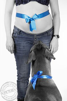 Pregnancy photography with dog - zwangerschapsfotografie met hond in2pictures fotografie