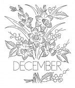 Flower_of_the_Month-12-Dec