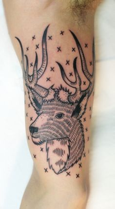 Buck tattoo, artist unknown.