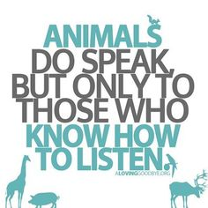 "Or as Piglet put it, ""Lots of people talk to animals. Not that many listen though. That's the problem."""