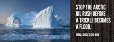 INTERNATIONAL SOLUTION - The Arctic 30 are among the brave and courageous humans who are willing to risk life and liberty for our Earth, but why can't we all have the same determination?