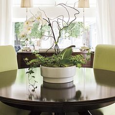 indoor plant as a centerpiece