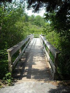 Robert Frost Wayside Trail, Ripton: See 63 reviews, articles, and 45 photos of Robert Frost Wayside Trail on TripAdvisor.