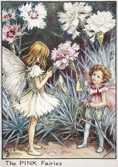 Cicely Mary Barker Illustration of the Pink Fairies for Flower Fairies of the Garden, Reproduction of Flower Fairy illustrations, © The Estate of Cicely Mary Barker, 2009 Cicely Mary Barker, Elfen Fantasy, Fantasy Art, Vintage Fairies, Beautiful Fairies, Flower Fairies, Fantasy Illustration, Fairy Art, Magical Creatures