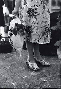 Elliott Erwitt. Dogs -repinned by Orange County studio photographer…