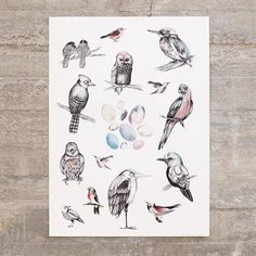 This is a lovely Birds print from Mini Empire made by the designer Jenny von Döbeln who also is nominated for the Formidable award 2013.